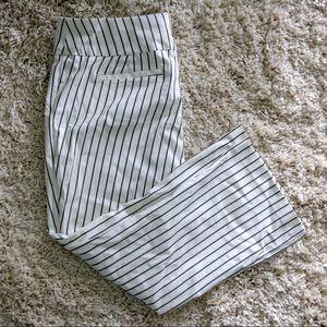 NY&Co. Ankle Pants